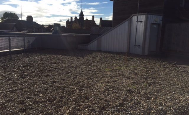 South West flat roofing project